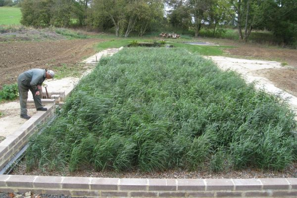The Ullenwood Estate | Sewage Treatment Plant & Reed Beds Design